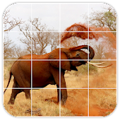 Tile Puzzles · Africa