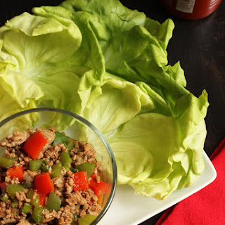Ground Turkey Wraps Recipes