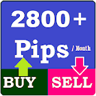 Forex Trading Signals icon