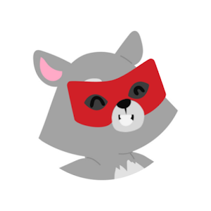 Raccoon VPN 1.0.6 by Raccoon company logo