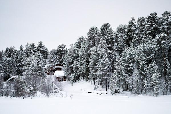 Tanta Tanta Neve di DiegoCattel