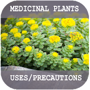 Medicinal Plants and their uses