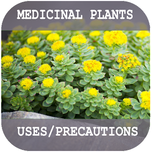 Medicinal Plants and their uses 1.2.2 by Josat Stech logo