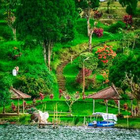 Fotografi by Eka Astiputra - Nature Up Close Gardens & Produce ( kebun, pohon bunga rumput air )
