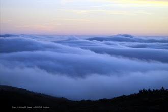 Photo: Looking West over the Pacific from Mt. Vision