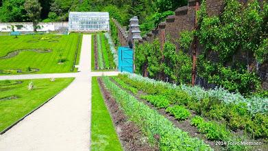Photo: Luostarin puutarhaa ympäröi korkea tiiliaita.
