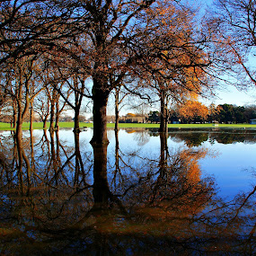 Hagley Park Flood by Tim Bennett - City,  Street & Park  City Parks
