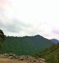 Photo: Our 2-hour crazy mountainous drive to the western edge of the Amazon Rainforest, Mindo Cloud Forest.