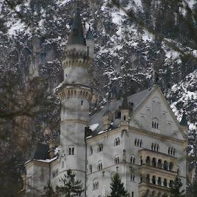 Castle by Carmen Hahn - Buildings & Architecture Public & Historical