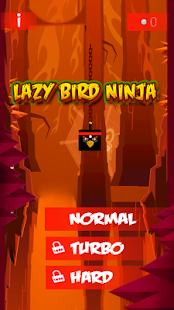 Lazy bird ninja crash fun 2 - náhled