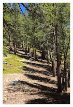 Photo: Eastern Sierras-20120716-466
