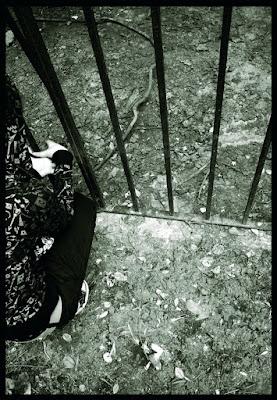 At the Gate di Pearl