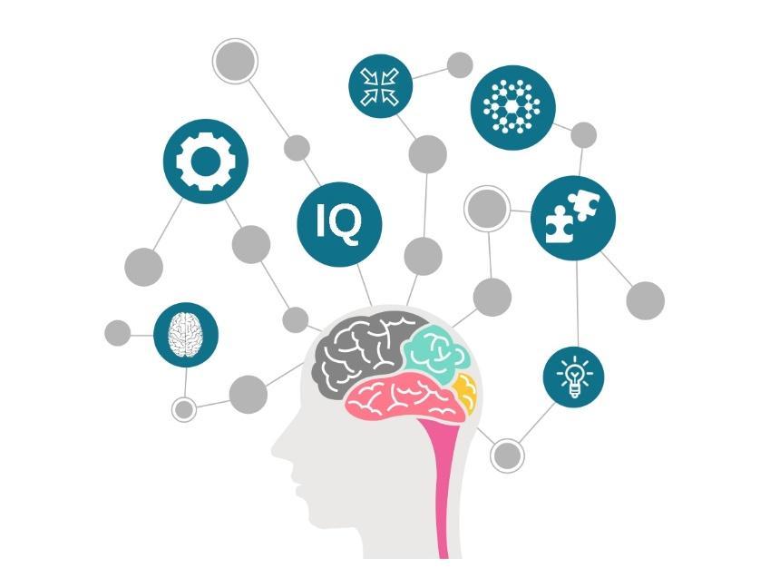 dynamics of a brain