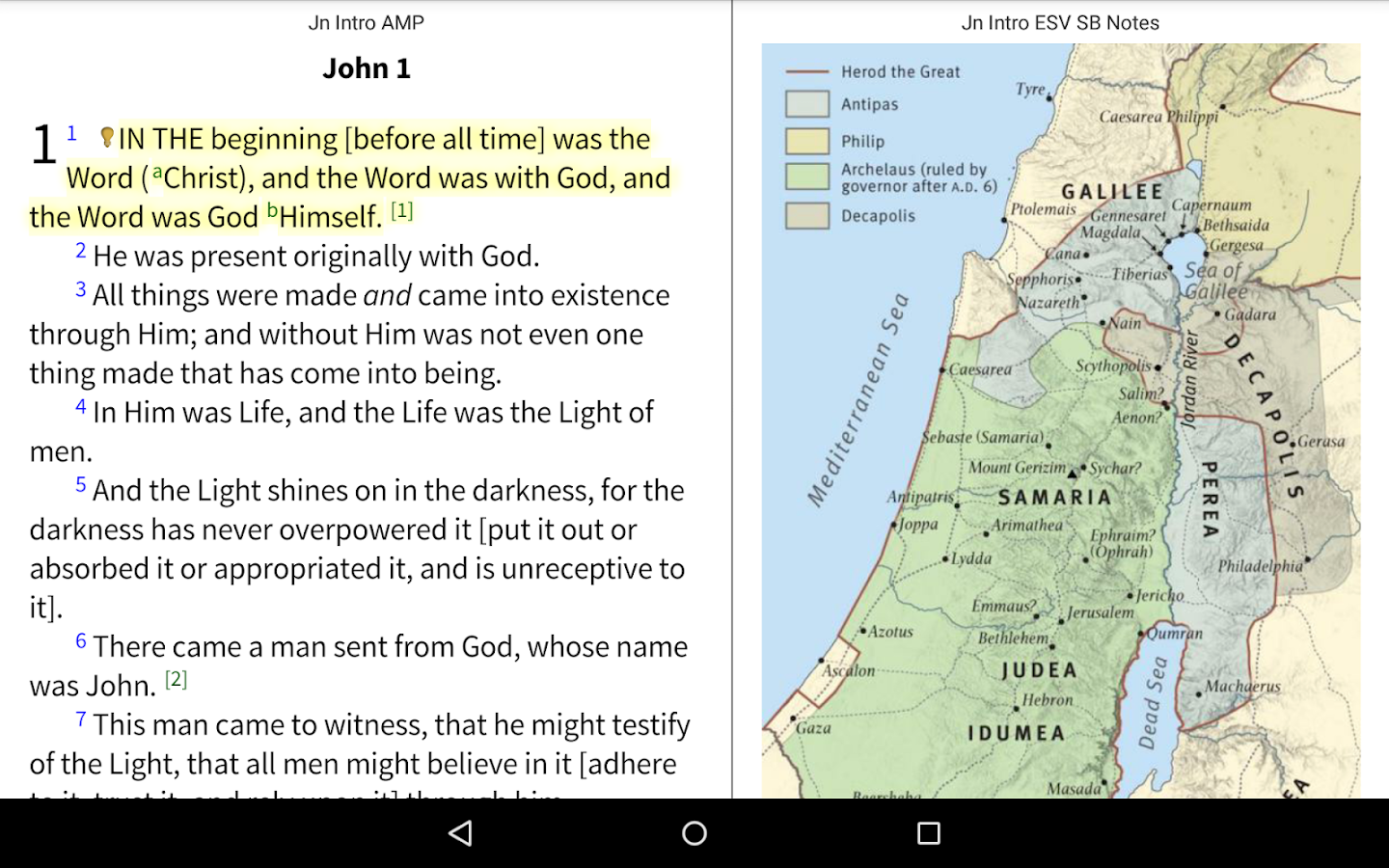 Amplified Bible+ by Olive Tree - screenshot