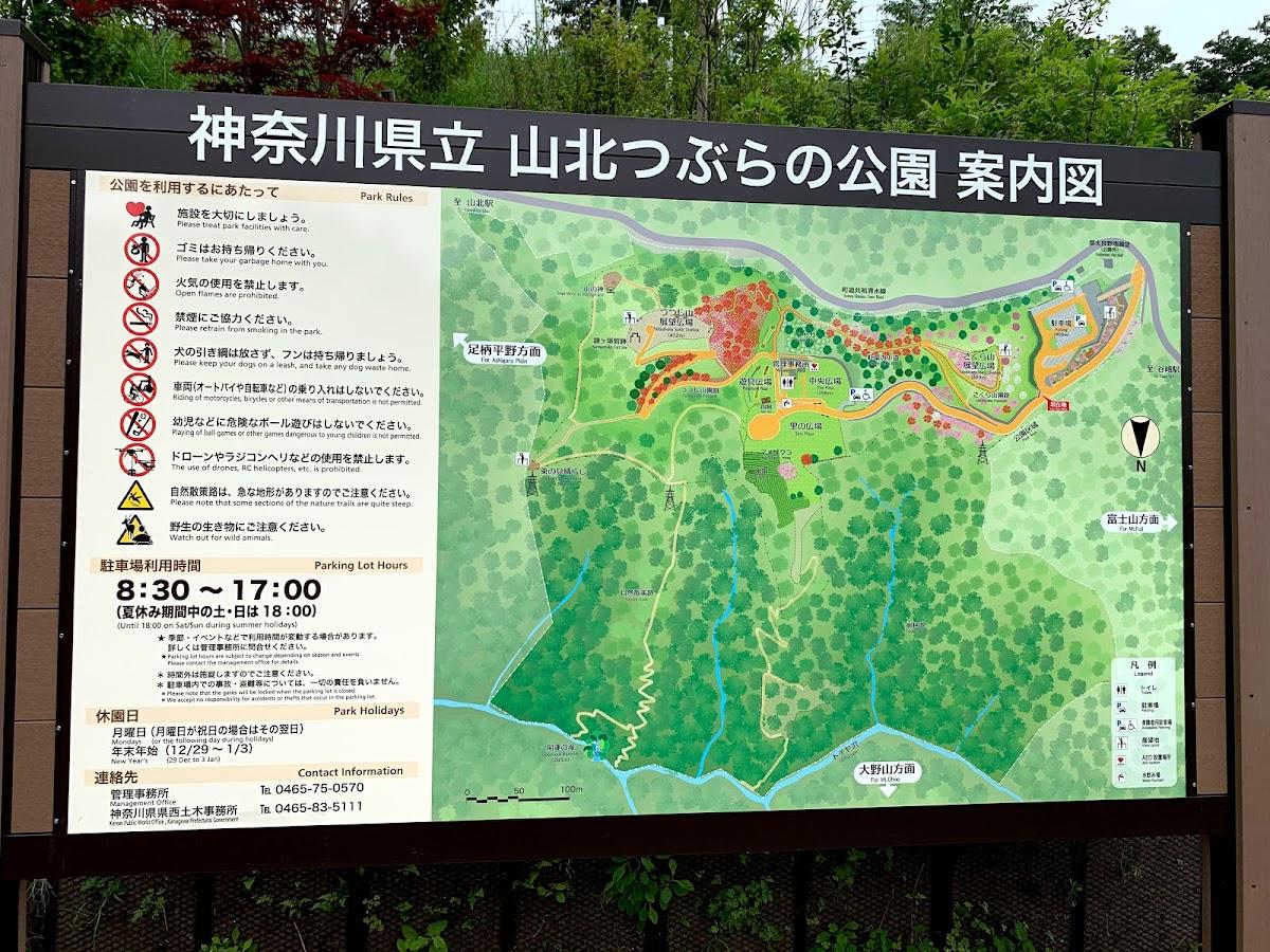 山北つぶらの公園