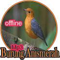 suara burung anis merah terlengkap offline icon