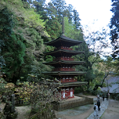 Japan:Muro-ji Temple(JP168)