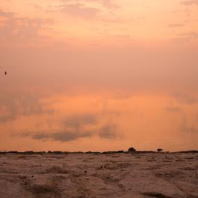 Saudi Arabia 2 by Xianwen Xu - Landscapes Waterscapes ( saudi arabia, 2016, beach, leica, morning )
