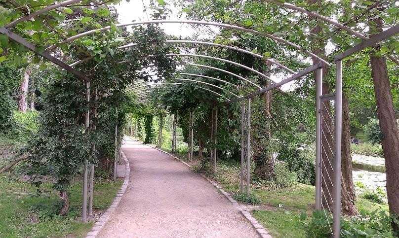 Do najbardziej popularnych elementów architektury ogrodowej należą między innymi pergole czy pawilony
