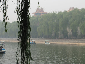 Photo: Day 190 - Boating Lake in Zhongshan Park