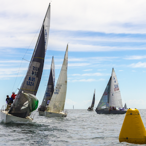 J24s State Championships in South Australia by Ms Lyons Photography - Transportation Boats ( south australia, j24s, boat racing, sail boats, ocean racing, boats, cycsa )