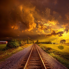 Short Stories To Tell by Phil Koch - Transportation Railway Tracks ( trending, country, shadow, rural, office, scenic, hope, canon, beautiful, weather, season, train, sky, flowers, emotions, journey, natural, woods, rail, inspired, heaven, morning, field, light, peace, shadows, dawn, photography, love, sunrise, forest, mood, yellow, vertical, clouds, fineart, sun, twilight, life, colors, unity, joy, rails, lines, camera, popular, arts, meadow, wisconsin, art, living, green, storm, railroad, nature, inspirational, nopeople, dramatic, portrait, tracks, horizons, horizon, environment, outdoors, blue, sunset, earth, travel, serene, landscape,  )