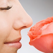 Сон нос