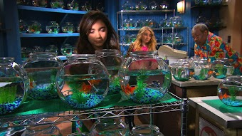 Girl Meets Fish