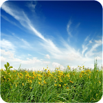 Beautiful Nature Wallpapers #1 Icon