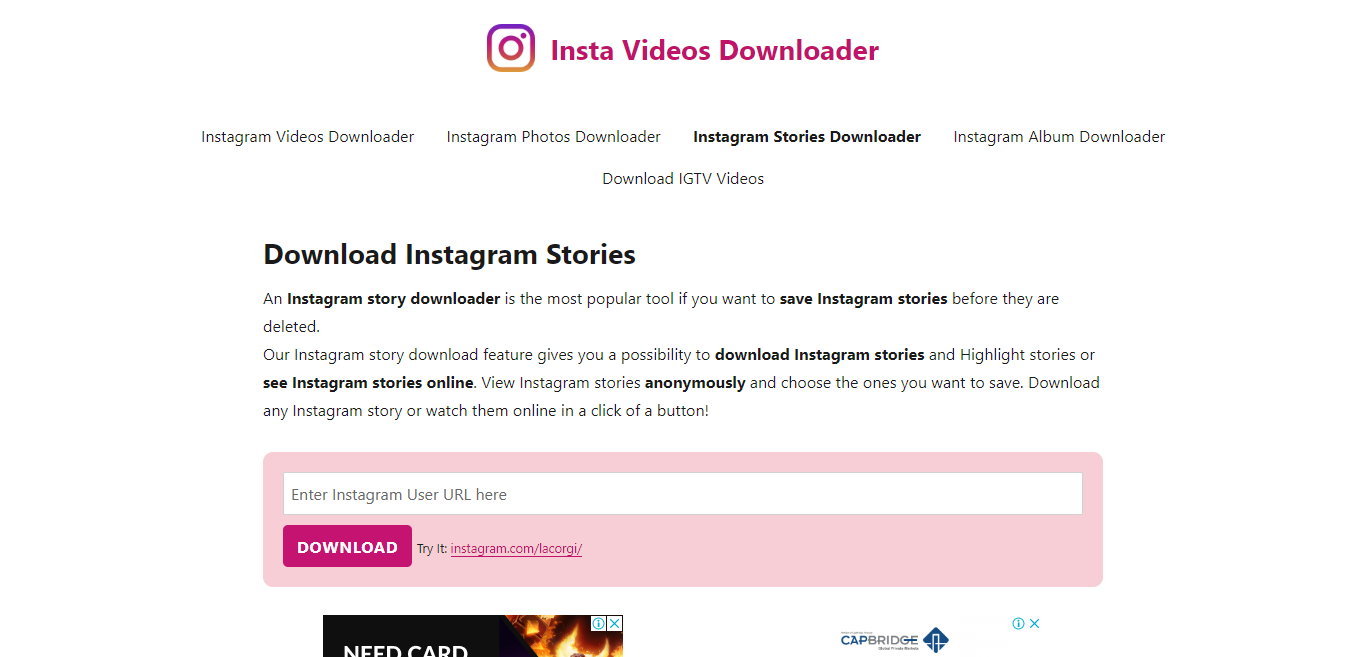 Instagram story download Instagram story viewer, download private Instagram stories, Instagram story saver, download Instagram story video