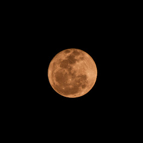 Yellow Moon by Naveen Rai - Novices Only Landscapes ( moon, full moon, yellow moon )