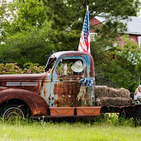 Good Ole Days by Jan Davis - Transportation Automobiles