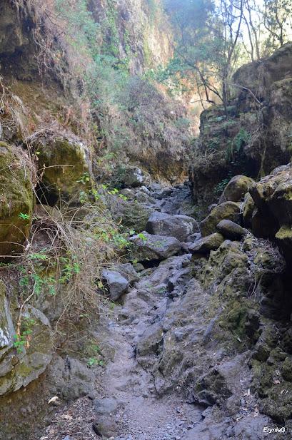 ścieżka korytem rzeki