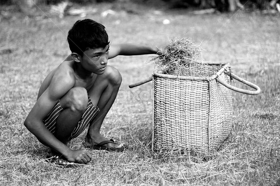 picking up grass by Harris Munandar - News & Events World Events