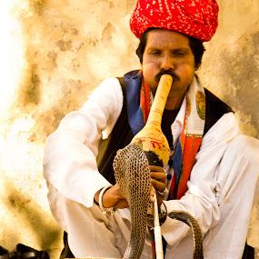 Snake dance by Saravanakumar Thangavelu - People Musicians & Entertainers