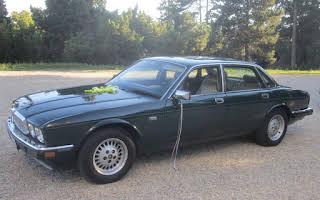 Jaguar XJ 6 Rent Niederösterreich