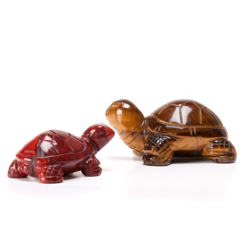Sköldpadda liten och stor