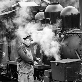 Driver by Brett Florence - People Portraits of Men ( train, driver, steam )