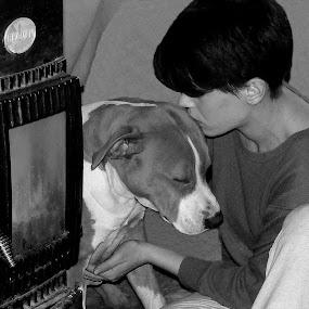 Between two heats  by Jasminka Lunjalo - Animals - Dogs Portraits ( love, warm, jasminka lunjalo, people, dog )