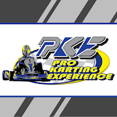 Pro Karting Experience