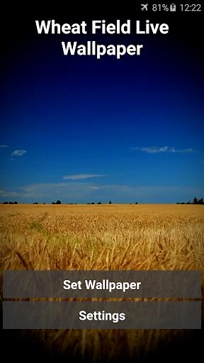 Wheat Field Live Wallpaper