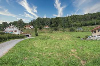 terrain à La Bresse (88)
