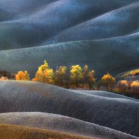 Dreamland by Jure Kravanja - Landscapes Prairies, Meadows & Fields