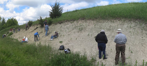 Photo: Saturday afternoon, June 11, 2011: fossil collecting at Cannon Falls, Minnesota. Photos by Roger Erickson.