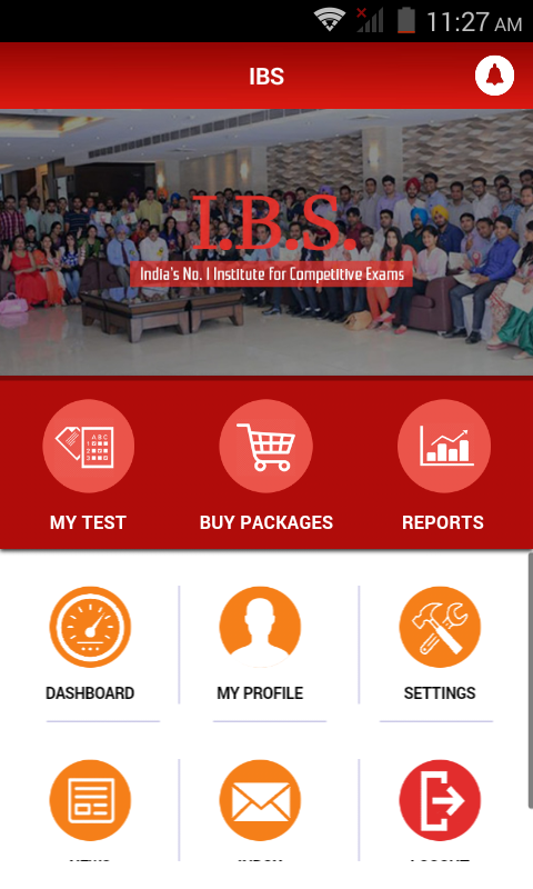 IBS Pvt Ltd- screenshot