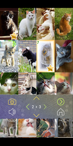 Cats Puzzle With Purring 1.2.5 {cheat|hack|gameplay|apk mod|resources generator} 3