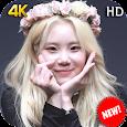 JooE Momoland Wallpaper HD KPOP Fans