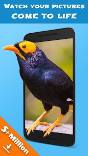Jellify – Funny Photo Effects 1.3.2 APK + MOD Download 2