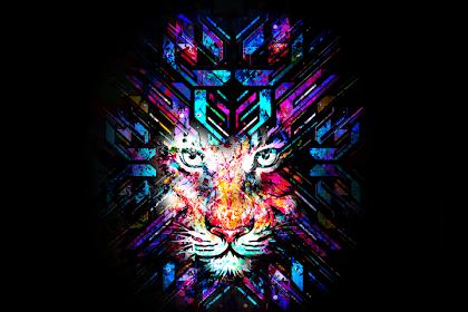 Coolpad Tiger Wallpaper
