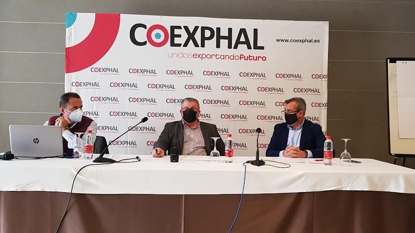 Además de las Manifestaciones de Interés, COEXPHAL está participando en otras convocatorias